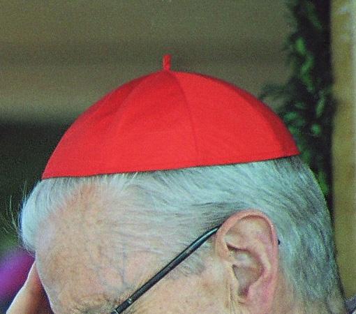 Cardinal, son importance pour un pays ?